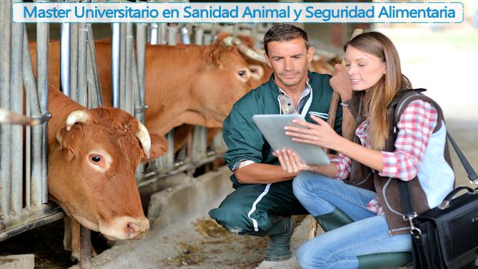 Máster Universitario en Sanidad Animal y Seguridad Alimentaria