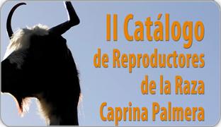Caprino_noticias_destacada