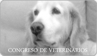 Congreso Veterinarios