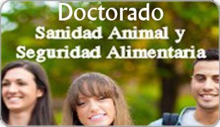 Doctorado_noticias_destacada