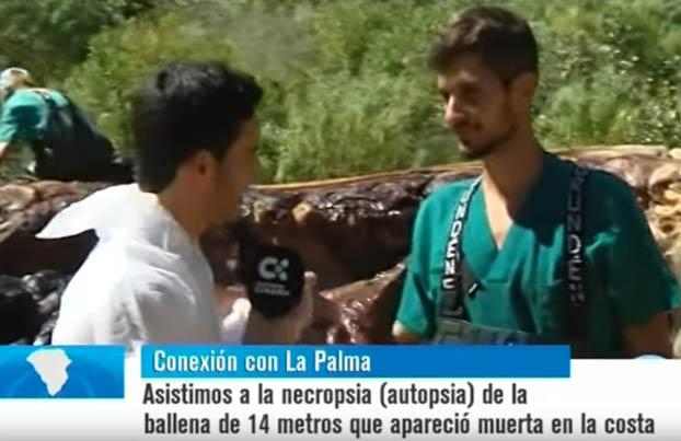 La_Palma