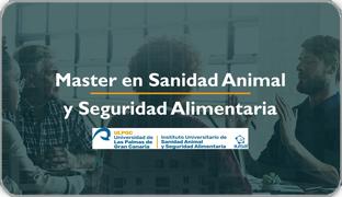 Master_SASA_noticia_destacada