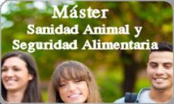 Master_noticia