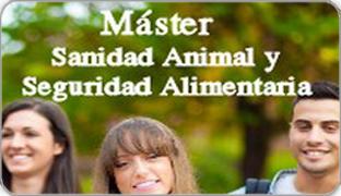 Master_noticias_destacada2