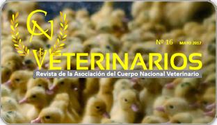 Veterinarios_noticias_destacada